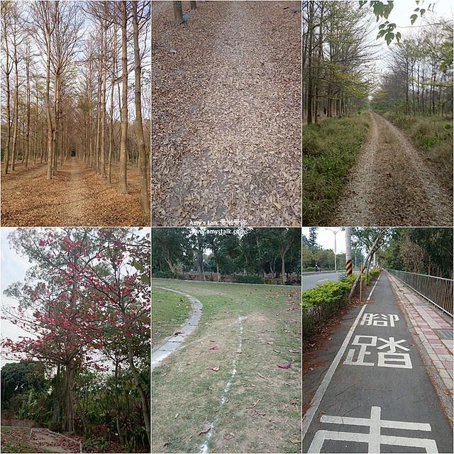 0208跑步風景