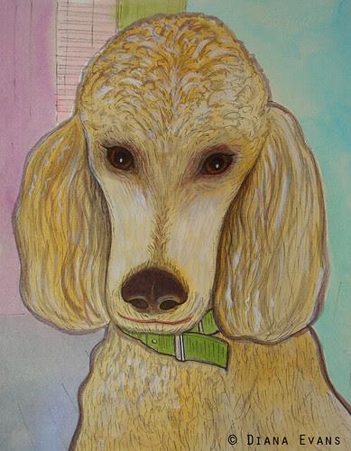 Pet Portrait Commission 3
