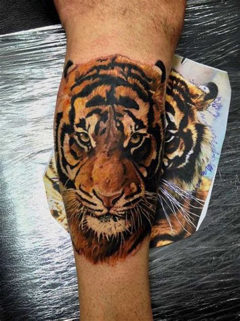 tiger tattoos designs  men women