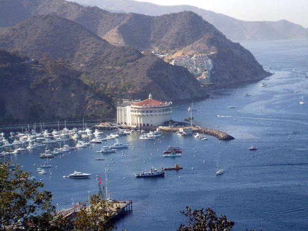 Avalon Bay as seen from a Catalina Island hillside, on October 4, 2013.