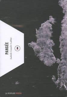 Résultats de recherche d'images pour «pangée isabelle»