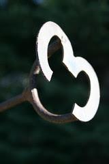 branding iron 3
