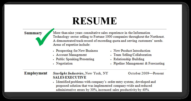 resume summary examples 24