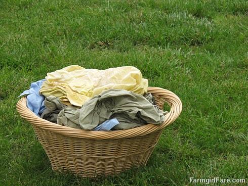 (28-13) Headed for the laundry line - FarmgirlFare.com