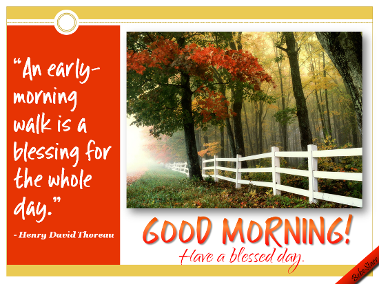 Have A Blessed Day Free Good Morning Ecards Greeting Cards 123