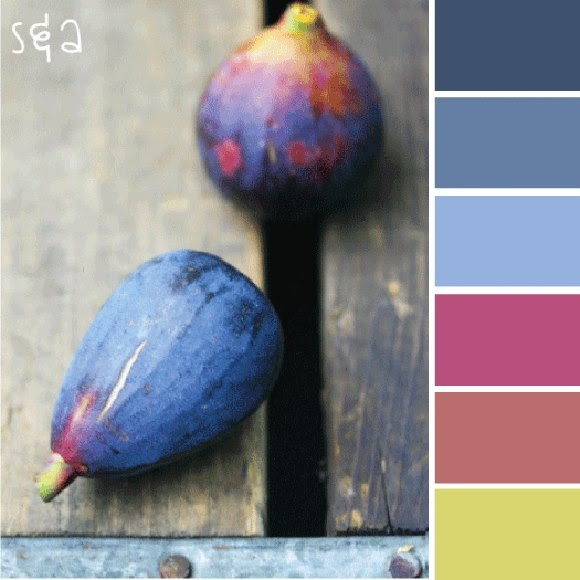 fig color scheme
