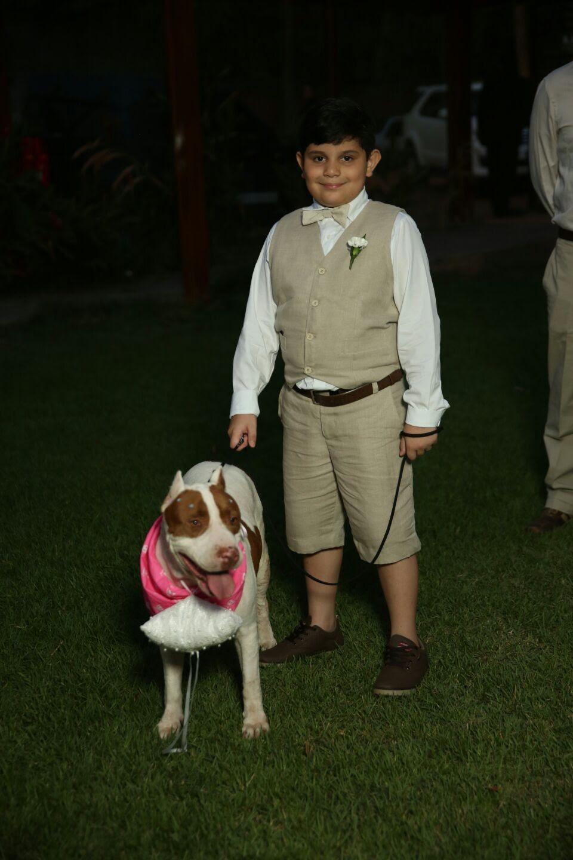 Cachorra entrou com o pequeno Edson Neto  (Foto: Tibério Helio)