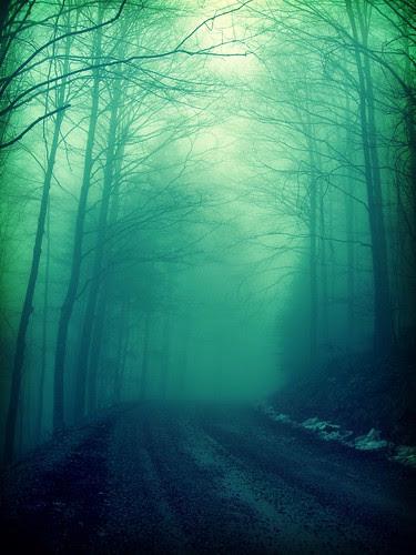 Vampire Season (by Annadriel)