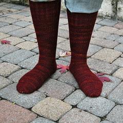 Wollmeise Ringwood Socks
