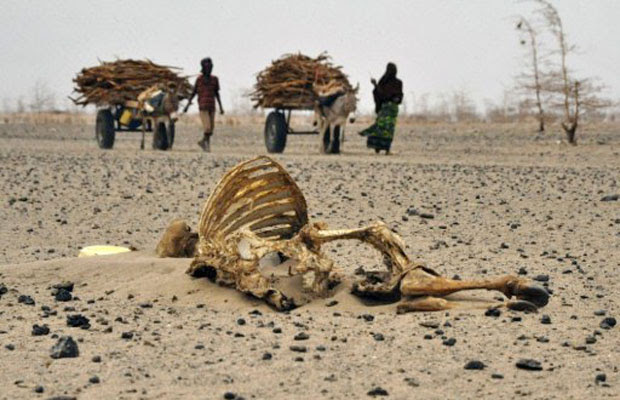Moradores caminham perto de animais mortos em Athibohol, noroeste de nairóbi, no Quênia (Foto: Simon Maina/AFP)