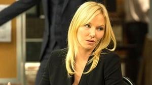 Law & Order: Special Victims Unit Season 19 : Flight Risk