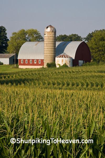 Summer Farm Scene, Rock County, Wisconsin