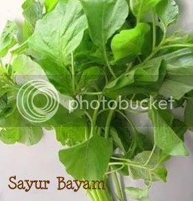 Sayur Bayam