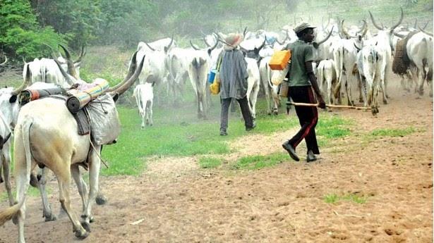 Tension As Herdsmen Flee South East, Invade Benue Communities