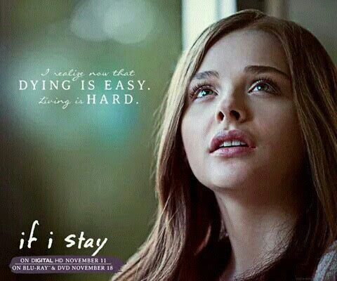 If I Stay Images Quotes Wallpaper And Background Photos 37808658