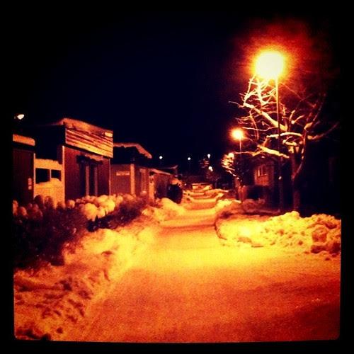 december neighbourhood