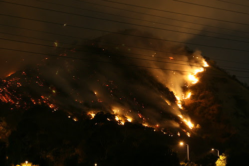 Entire Hill on Fire