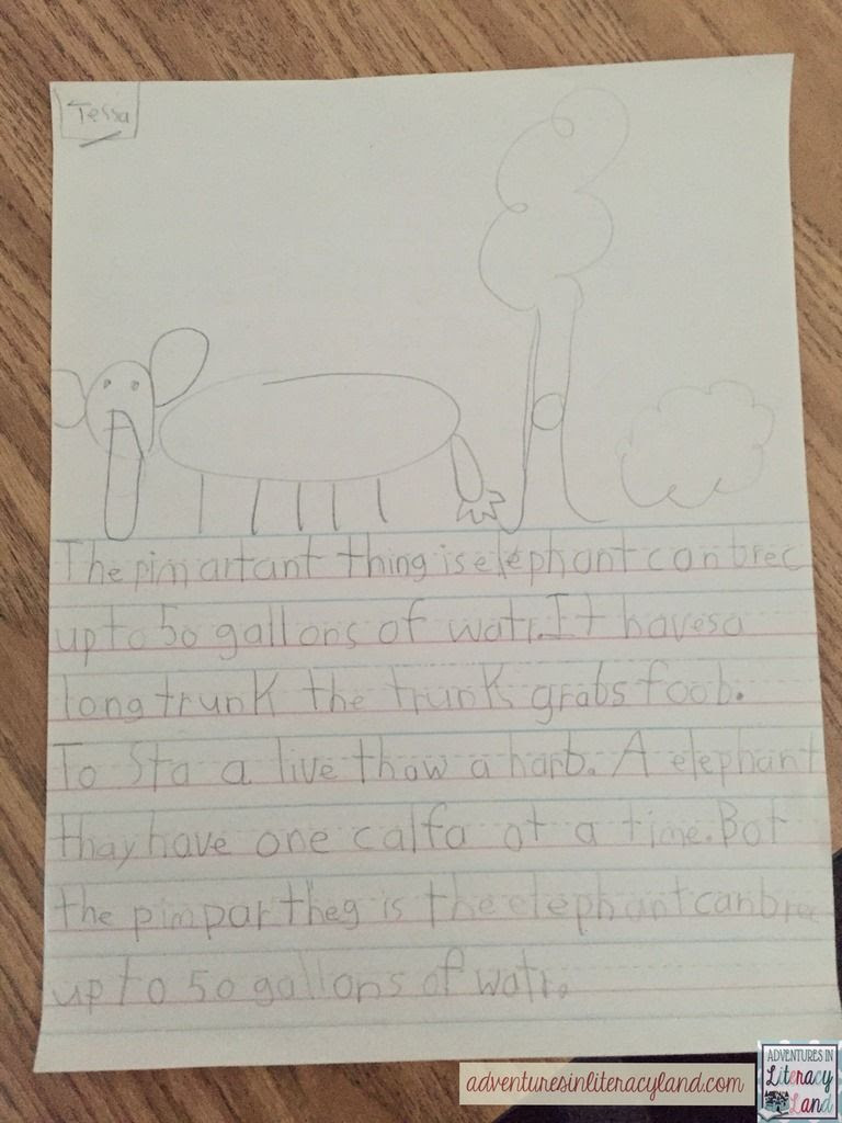 Even our youngest students can write simple research paper by using a fun and easy mentor text. The Important Book helps students write a simple research paper after doing some quick research.