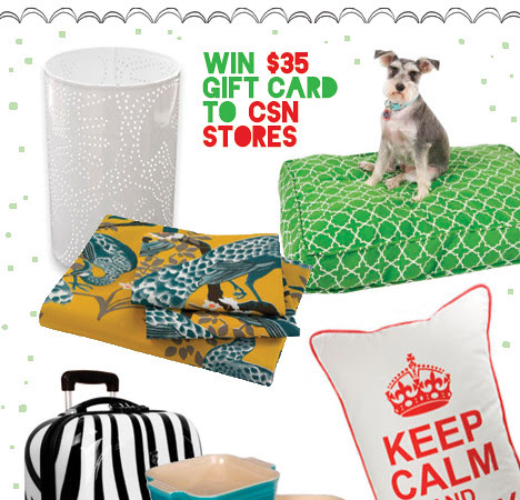 Friday Surprise: CSN Giveaway