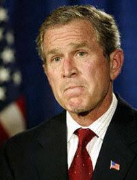 Bush_200