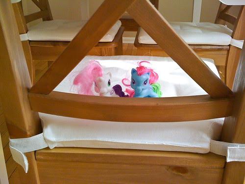 021810_ponies.jpg