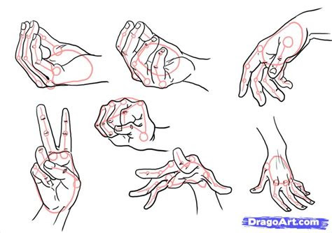 draw hands step  step hands people