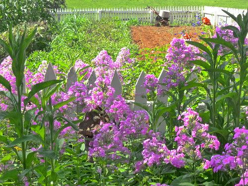 Garden at Ashlawn-Highlands