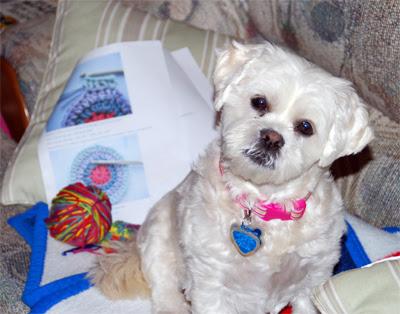 Mama-is-playing-with-yarn
