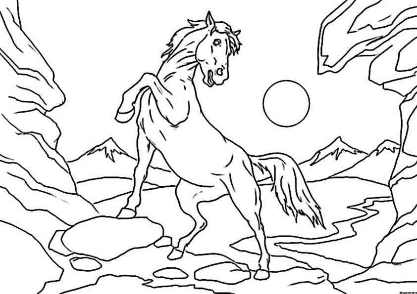 Ausmalbilder Gratis Pferde 14 Ausmalbilder Gratis