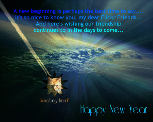 Quotes About New Year And Friendship 13 Quotes