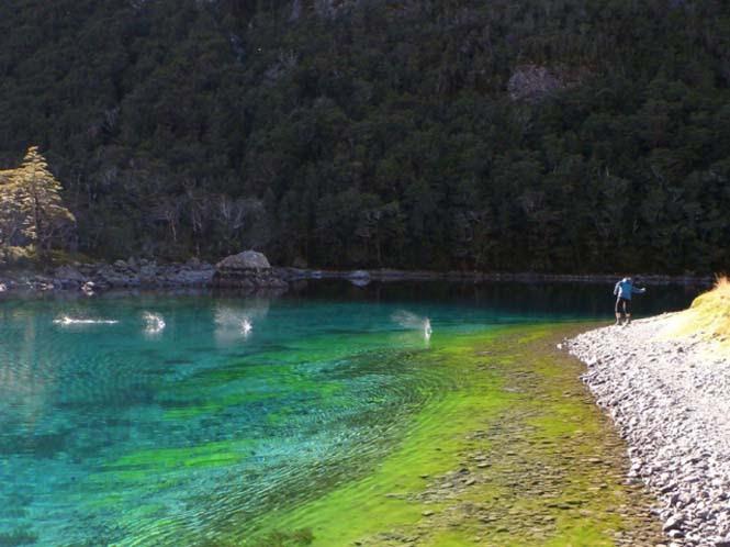 Κρυστάλλινη λίμνη στη Νέα Ζηλανδία (13)