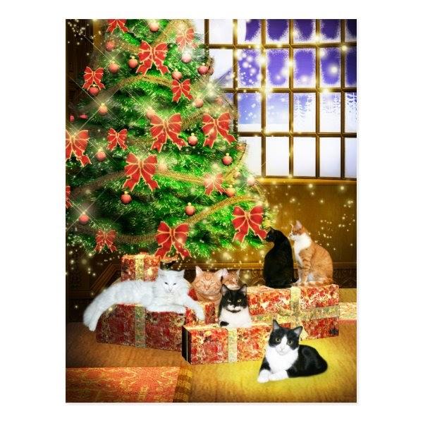 Cool Christmas Stuff Cat Christmas Postcards