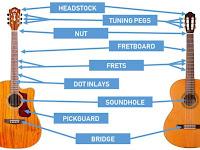 Guitar Parts Diagram