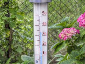 /82/Welzijn/Thermometer.jpg