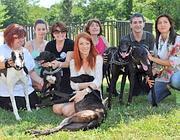 I cinque levrieri adottati in Italia