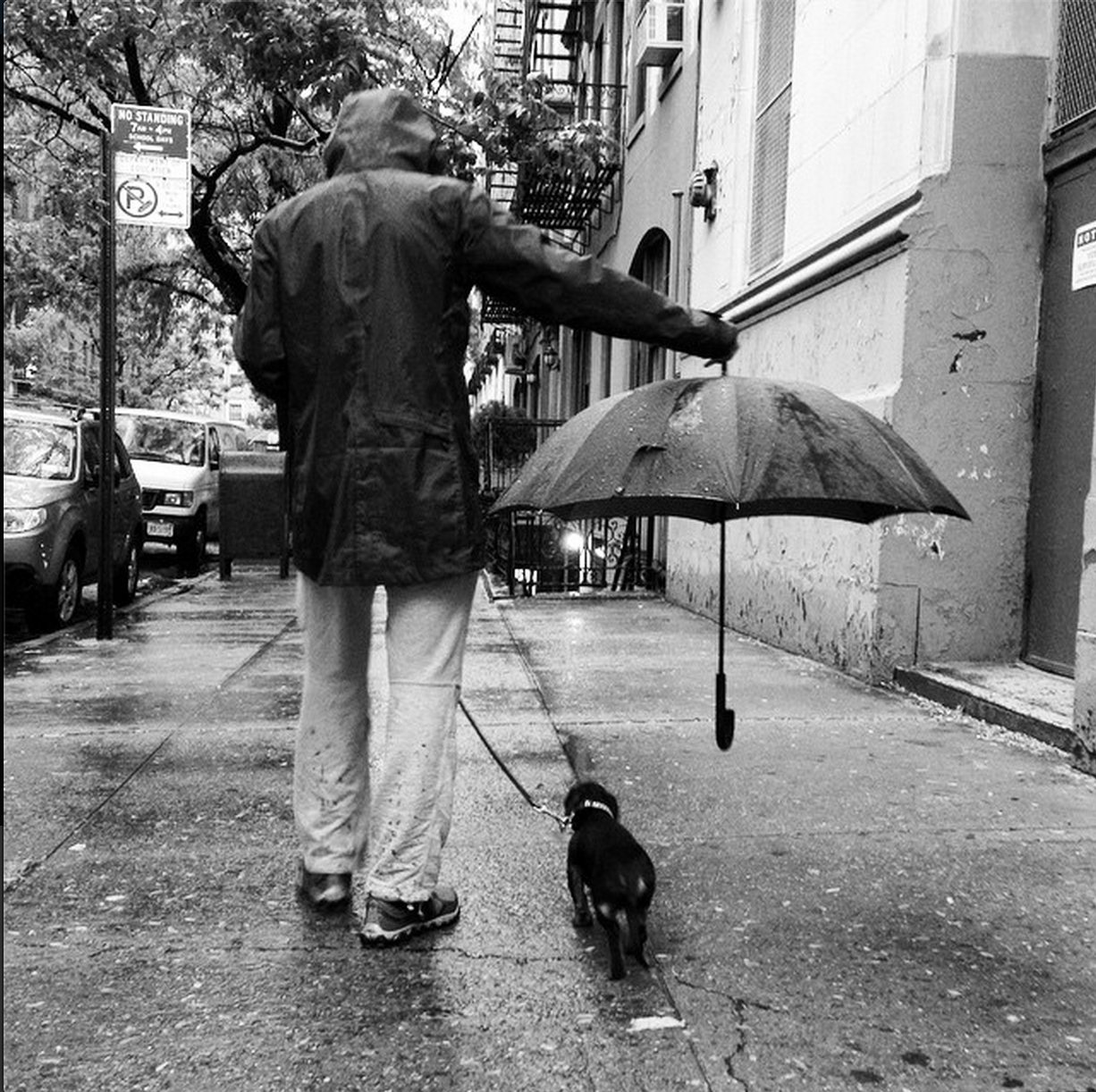 cuteanimalsawwww:  Best umbrella ettiquette, spotted on the streets of NYC via /r/aww http://ift.tt/12Ct5qR