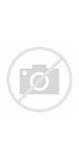 Acute Abdominal Pain 5 Year Old Images