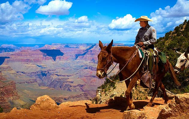 Grand Canyon - Places to visit out west