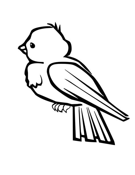 Coloring Pages With Birds