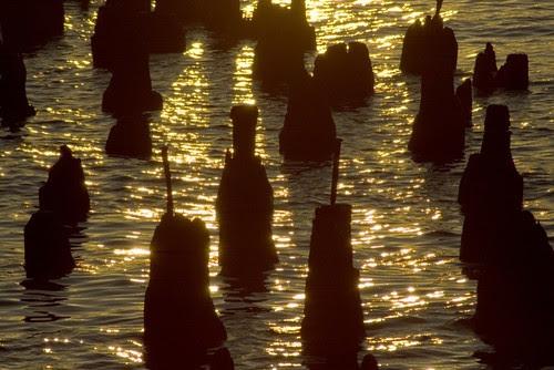breakwater close-up at dawn.jpg