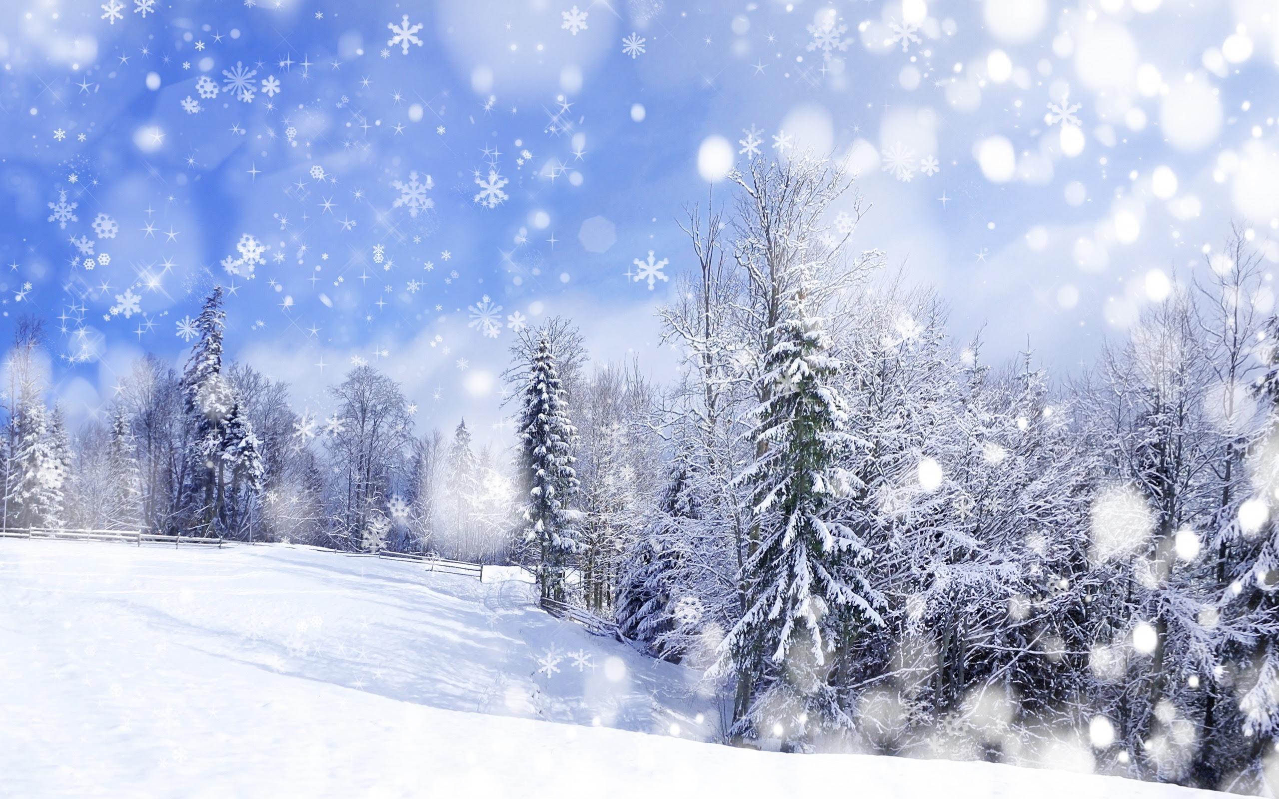17 Winter Scenery Hd Wallpaper Basty Wallpaper