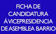 Ficha de candidatura á vicepresidencia de asemblea de barrio