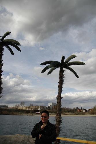 Palm trees in Slovakia???