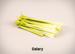 5720-Celery-cropped-full-res copy