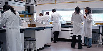 Scientists in a laboratory of the University o...