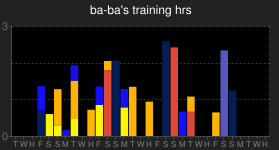ba-ba's running training log