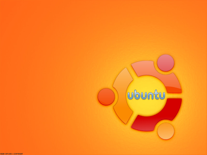 http://fc07.deviantart.net/fs36/f/2008/276/b/b/Linux_Ubuntu_Wallpaper_by_RA3IISKYLINE.jpg