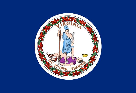 va flag