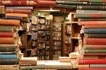 The Problem With Beautiful Bookstores Is That Everyone Wants Photos, All Of The Time