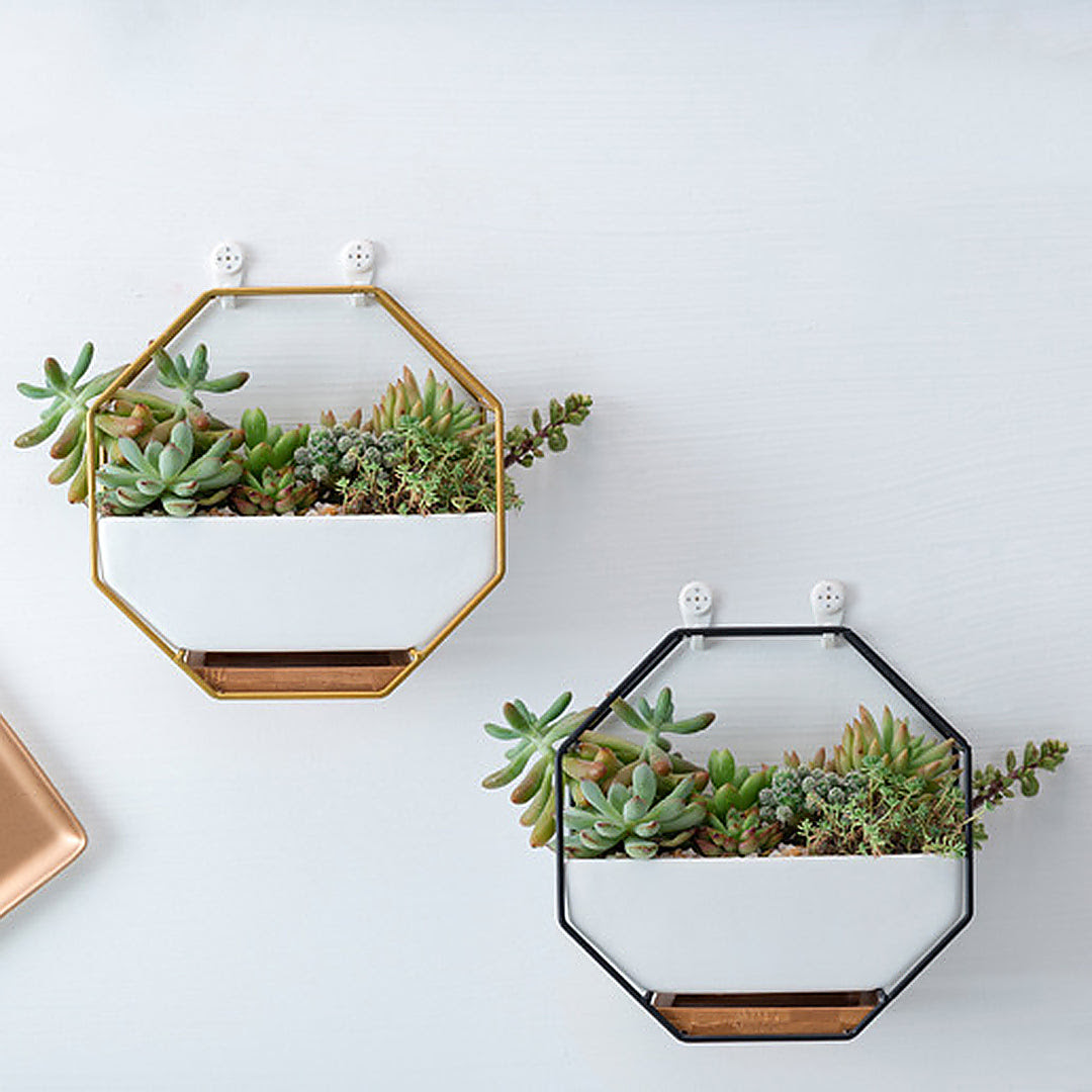 Honeycomb Frame Ceramic Planter Pot Zacamarket Lifestyle Store